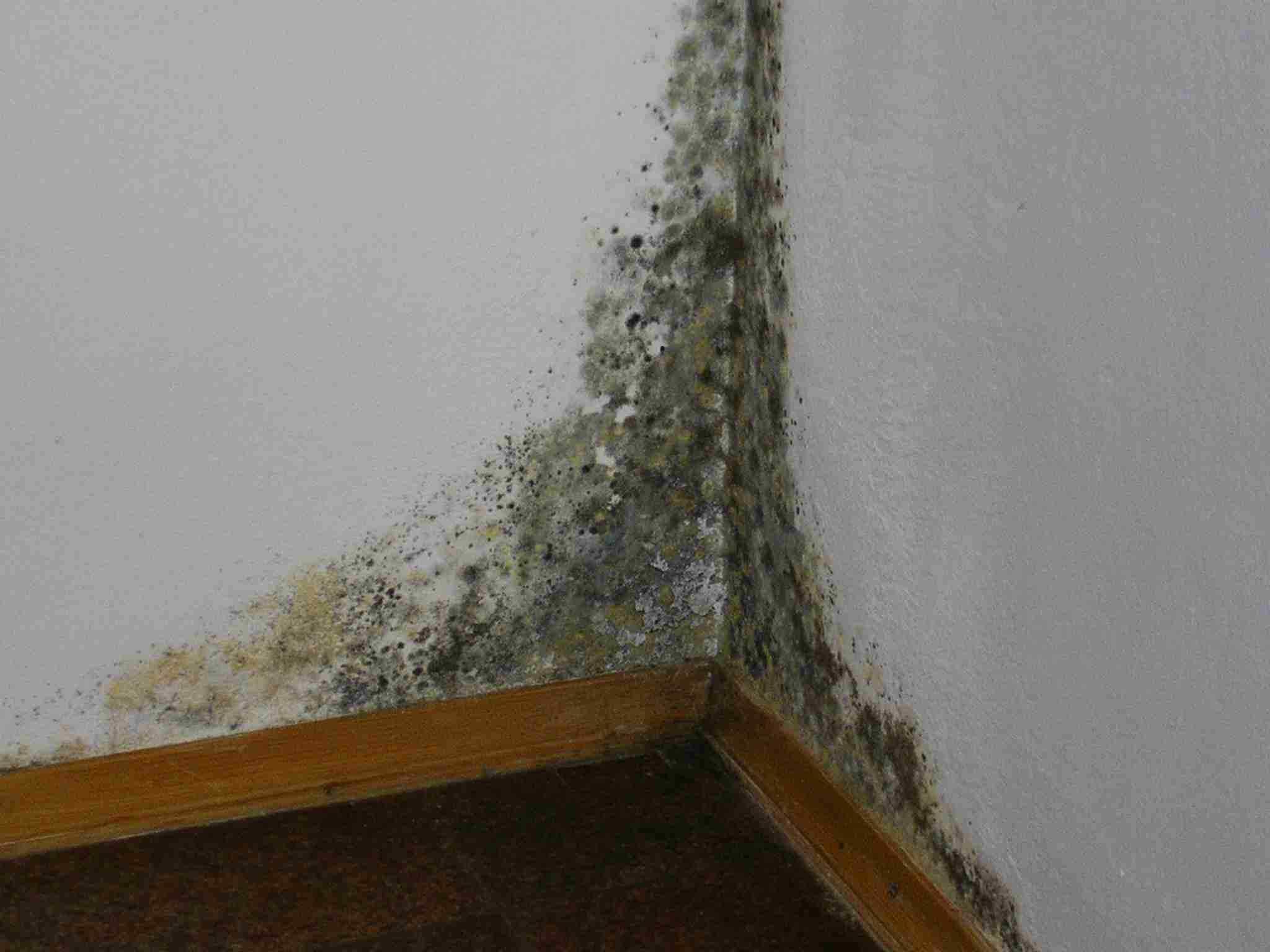 Потемнения на стенах после утепления
